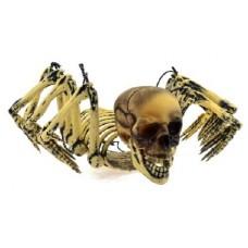 Паук подвесной с человеческим черепом
