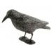 Визуальный отпугиватель птиц Ворон
